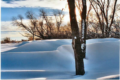 Winter snowdrifts